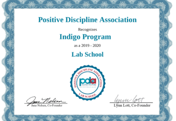 Certificate - Indigo Program-1